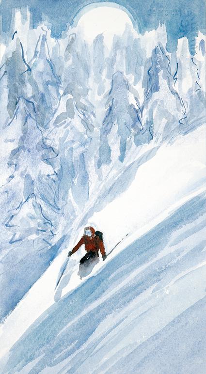 powder skiing Monashees