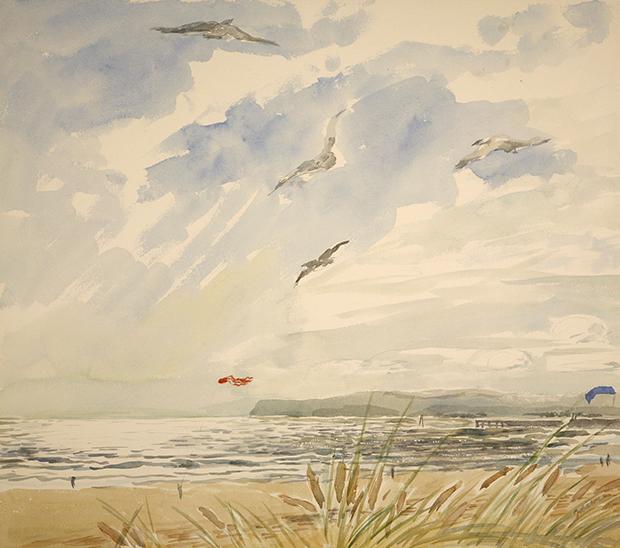 Camber Sands kent Gulls