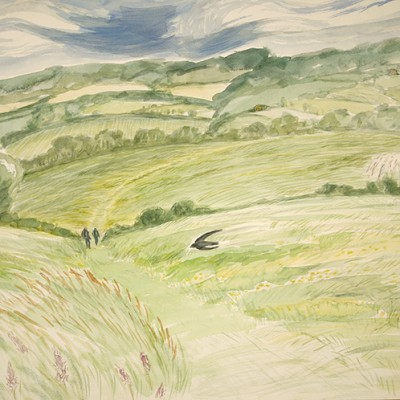 Swifts Dive Bombing amongst the Buttercups Cotswolds Way - watercolour 55 x 75 cm SOLD