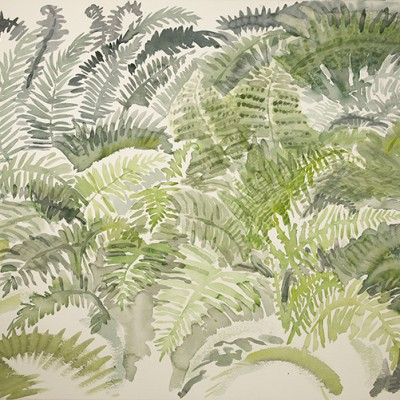 Ferns in Bethel Maine Woodland - watercolour on paper 55 x 75 cm £425