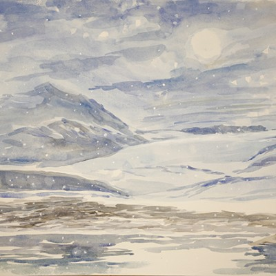 Arctic Fox on the Shore Trygghamna fjord Svalbard - watercolour on paper 49 x 89 cm  framed £700
