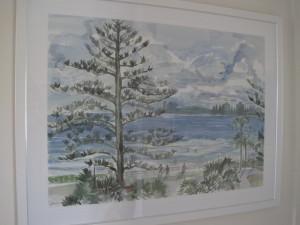 pine australia