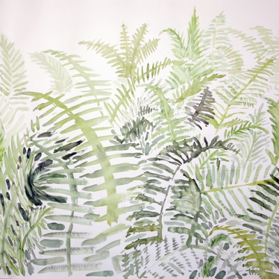 Waving Fern Fronds in Woods of Western Maine - watercolour on paper 55 x75 cm £425