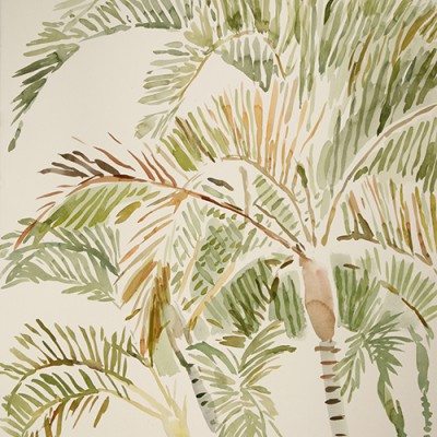 Golden Cane Palm Dypsis Lutescens in Queensland - watercolour on paper 75 x 55cm £575