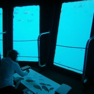 Painting on the pontoon on Hardy Reef in Queensland, Glass viewing room