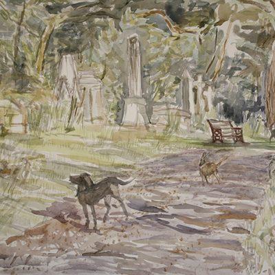 Alfie in Nunhead Cemetery