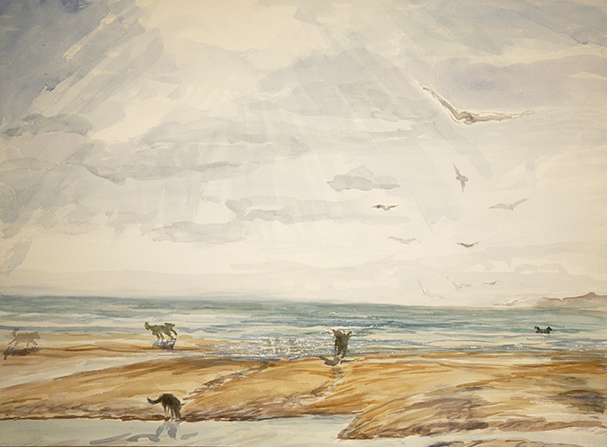camber sands dogs
