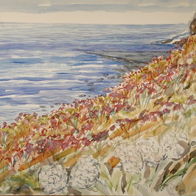 Sea Thrift along coast Kimmeridge Bay - watercolour on paper 56 x 76 cm (22 x 30 inches ) £600