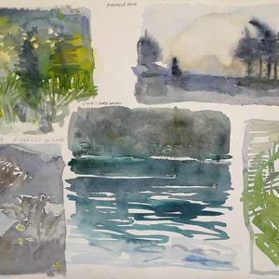 Storyboard for paintings from Maine in July 2019