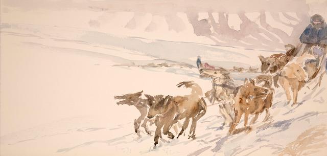 svalbard huskies