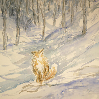fox painting snow