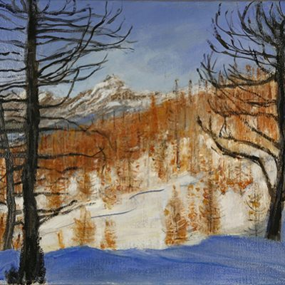 val Maira larch larches landscape mon viso winter snow alps skiing italy