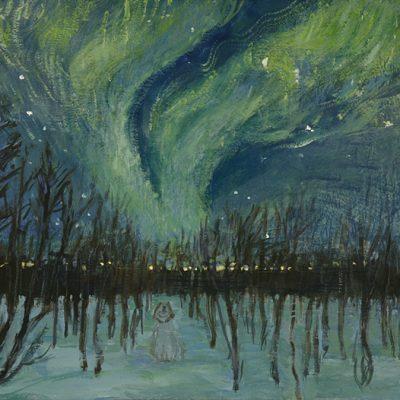 aurora borealis tromso north lights
