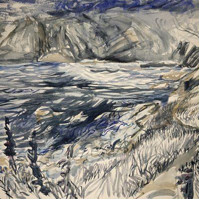 Nocturne - Foxgloves along Path Elender Cove Prawle Point - watercolour on D'arches paper 55 x75 cm (21 x 29 inches) £600